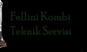 Fellini Kombi Servisi Bursa